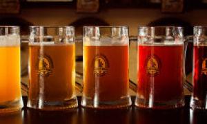 Как пиво влияет на организм мужчины