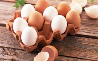 Что делать при отравлении яйцами
