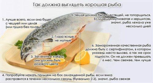 как выглядит хорошая рыба